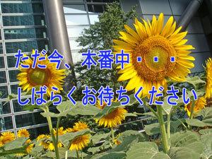 Dsc05768blog_2