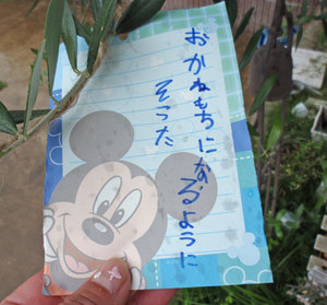 P7080021blog
